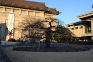 OR Kokufu 2012 (17)