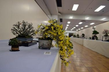 OR Kokufu 2012 (9)