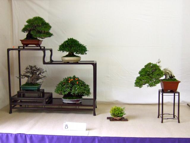 9th Higo Gayu-kai exhibition  9th-higo-gayu-kai-exhibition-4