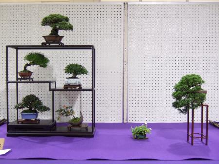 Shohin Displays - Japan Kyusyu-exhibition-12