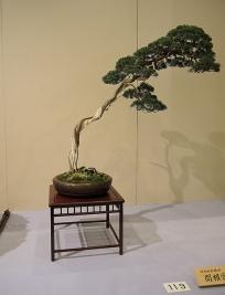 Kokufu Ten 2013 JS (11)