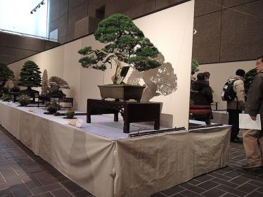 Kokufu Ten 2013 JS (22)