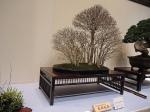 Kokufu Ten 2013 JS (26)