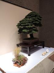 Kokufu Ten 2013 JS (29)