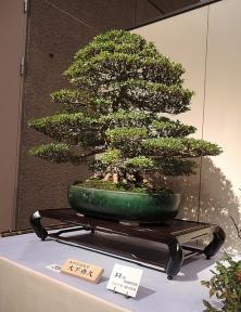 Kokufu Ten 2013 JS (37)