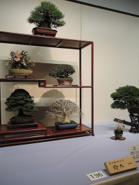 Kokufu Ten 2013 JS (40)