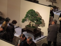 Kokufu Ten 2013 JS (50)