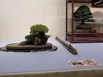 Kokufu Ten 2013 JS (52)