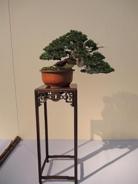 Kokufu Ten 2013 JS (56)