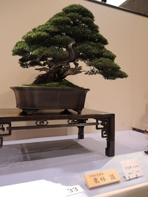 Kokufu Ten 2013 JS (73)