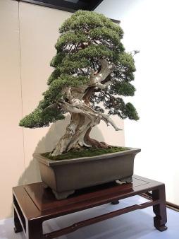Kokufu Ten 2013 JS (79)