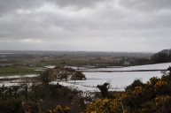 Overlooking Comber with it's own warmer climate and no snow.