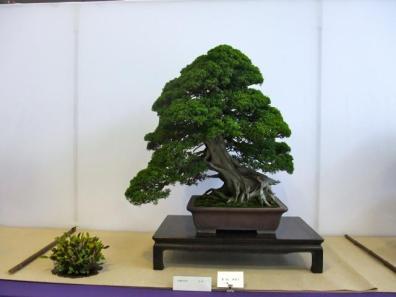 Nishinihon meihin-ten (1)