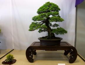 Nishinihon meihin-ten (11)