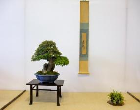 Nishinihon meihin-ten (21)