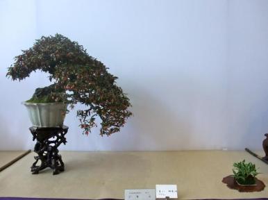 Nishinihon meihin-ten (23)