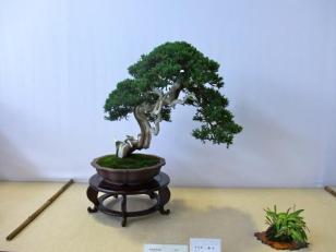 Nishinihon meihin-ten (27)