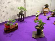 Koujitukai _Tokujyukai joint exhibition (16)