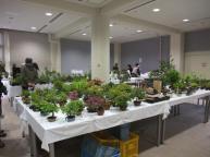 Koujitukai _Tokujyukai joint exhibition (17)