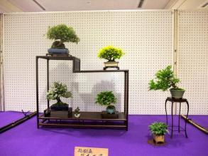 Koujitukai _Tokujyukai joint exhibition (19)