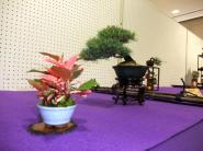 Koujitukai _Tokujyukai joint exhibition (6)