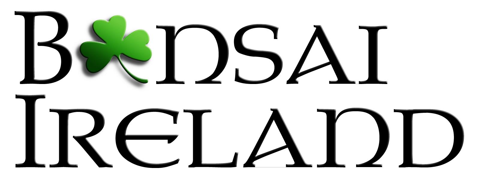 Bonsai_Ireland_31