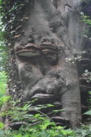 Grumpy Face Ent