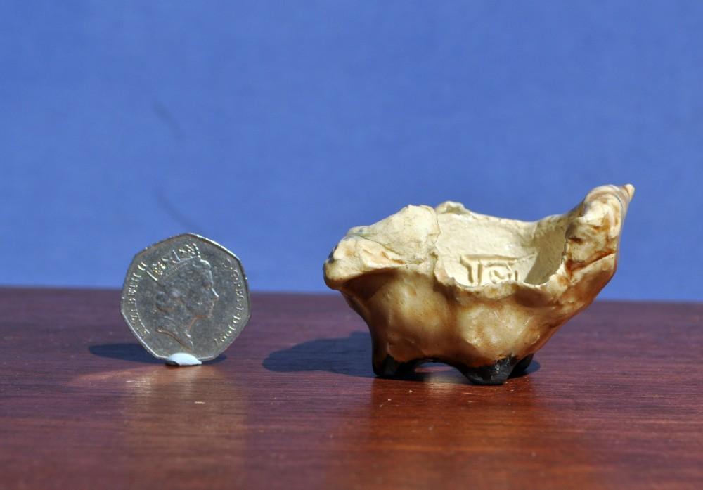 Magic Ceramics - Accent Pots (6/6)