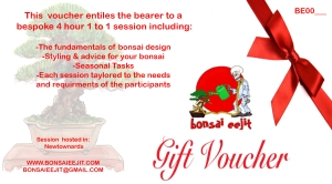 1 to 1 gift-vouchers