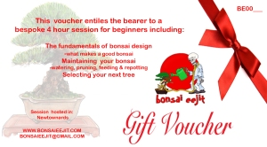 Beginners-gift-vouchers Blog page