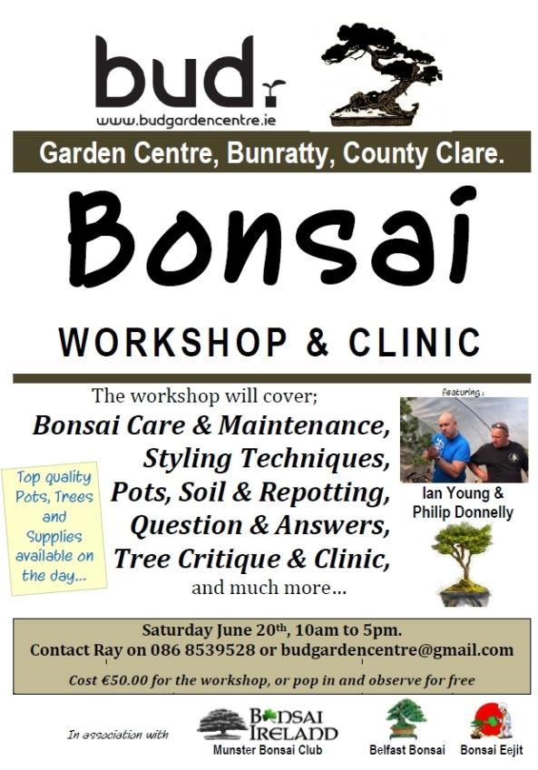 bud bonsai flyer
