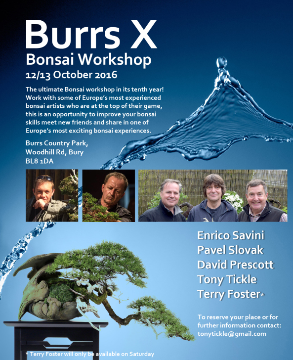 Burrs 2016 poster