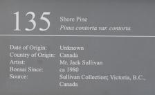 DSC04231