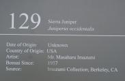 DSC04235