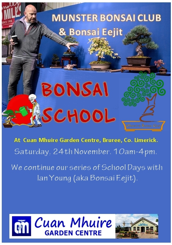 bonsai-school-bonsai-eejit nov 24 2019